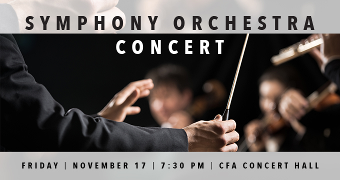 Symphony Orchestra Concert Image
